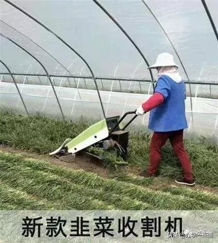 割韭菜式的屠杀招生法,正一步步把你的培训机构拖到死亡深渊